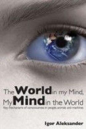 World in My Mind, My Mind in the World