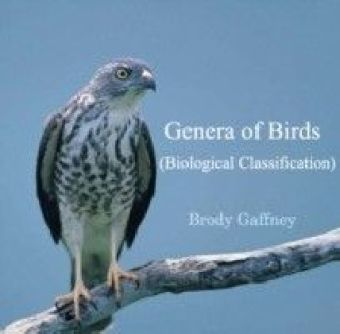 Genera of Birds (Biological Classification)
