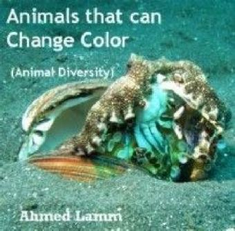 Animals that can Change Color (Animal Diversity)
