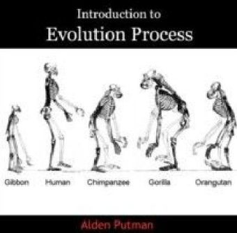 Introduction to Evolution Process