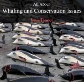 All About Whaling and Conservation Issues