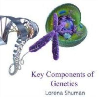 Key Components of Genetics