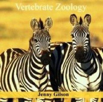 Vertebrate Zoology