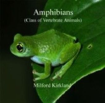 Amphibians (Class of Vertebrate Animals)