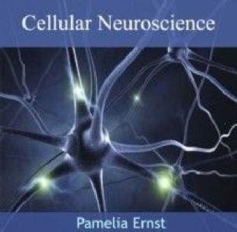 Cellular Neuroscience