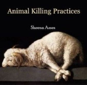 Animal Killing Practices