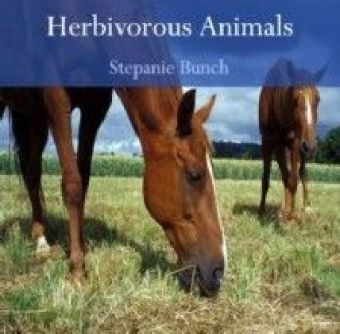 Herbivorous Animals