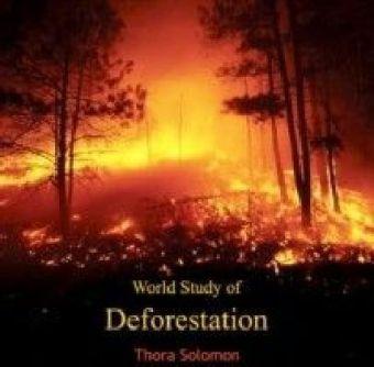 World Study of Deforestation