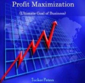 profit maximization goal