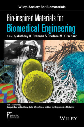 Bio-inspired Materials for Biomedical Engineering