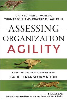 Assessing Organization Agility