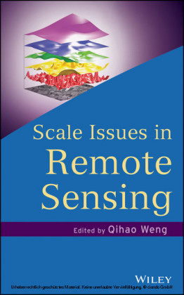 Scale Issues in Remote Sensing