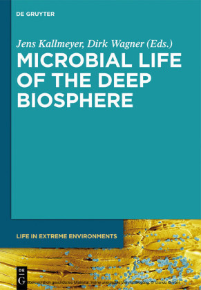 Microbial Life of the Deep Biosphere