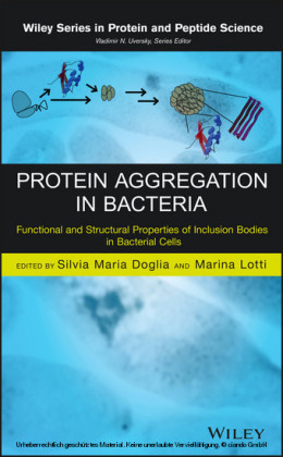 Protein Aggregation in Bacteria