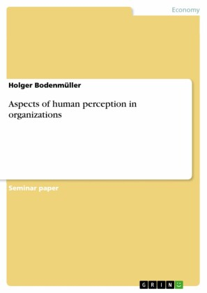 Aspects of human perception in organizations