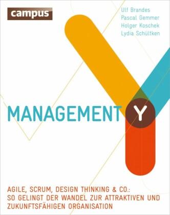 Management Y