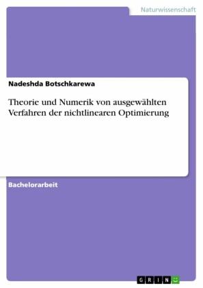 Theorie und Numerik von ausgewählten Verfahren der nichtlinearen Optimierung