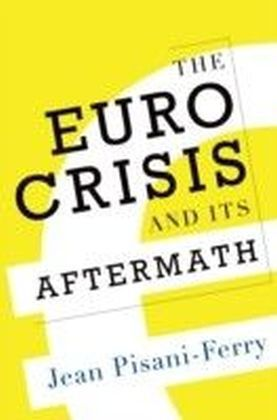 Euro Crisis and Its Aftermath