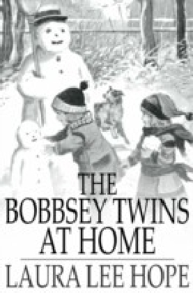 Bobbsey Twins at Home