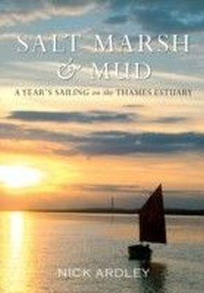 Salt Marsh & Mud