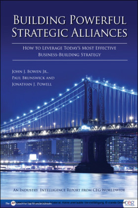Building Powerful Strategic Alliances