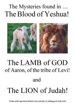 The Mysteries Found in The Blood of Yeshua!