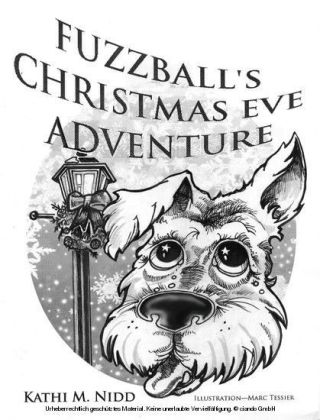 Fuzzball's Christmas Eve Adventure