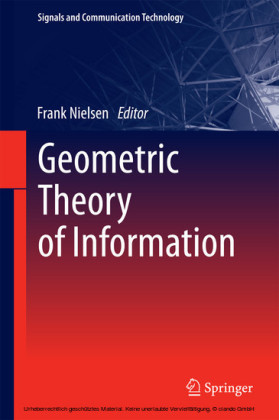 Geometric Theory of Information