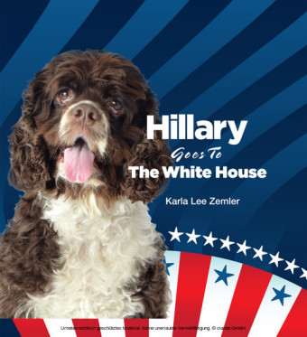 Hillary Goes to the White House