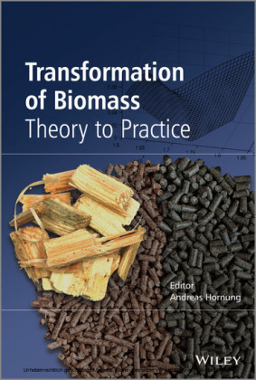 Transformation of Biomass