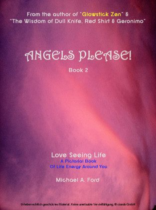 Angels Please! (Book 2)