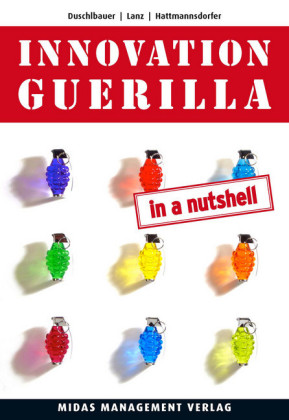 Innovation Guerilla (in a Nutshell)