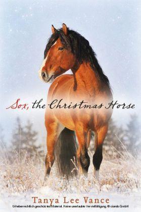 Sox, the Christmas Horse