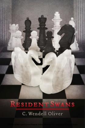 Resident Swans