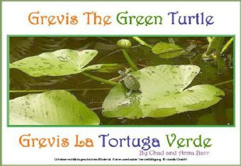 Grevis the Green Turtle