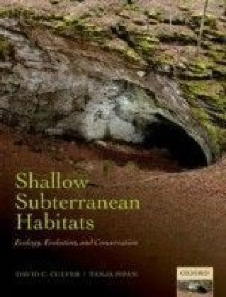 Shallow Subterranean Habitats: Ecology, Evolution, and Conservation