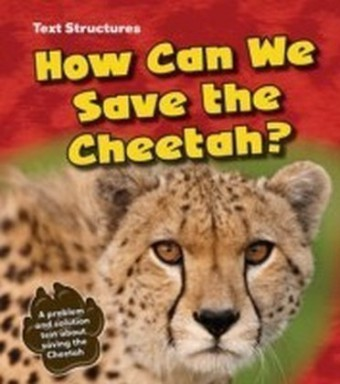 How Can We Save the Cheetah?