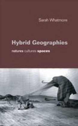 Hybrid Geographies