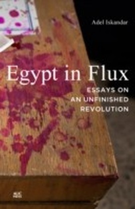 Egypt in Flux