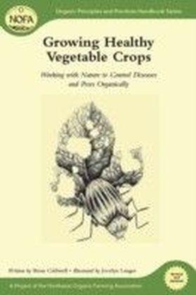 Growing Healthy Vegetable Crops