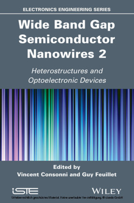 Wide Band Gap Semiconductor Nanowires for Optical Devices
