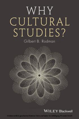 Why Cultural Studies