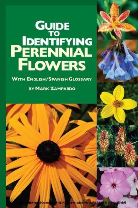 Guide to Identifying Perennial Flowers