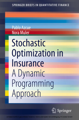 Stochastic Optimization in Insurance