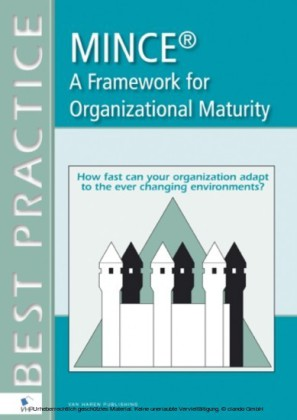 MINCE® - A Framework for Organizational Maturity