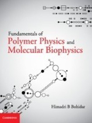 Fundamentals of Polymer Physics and Molecular Biophysics