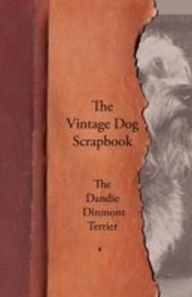 Vintage Dog Scrapbook - The Dandie Dinmont Terrier