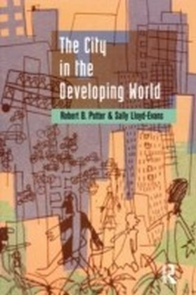 City in the Developing World