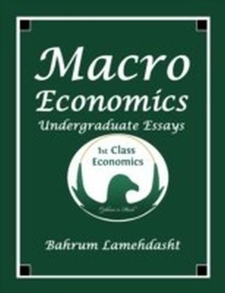 Macroeconomics Undergraduate Essays