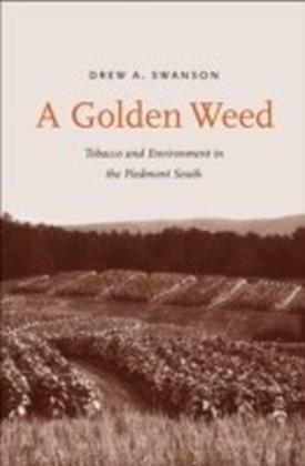 Golden Weed